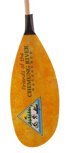 Friends of the chemung kayak paddle
